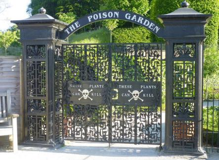 poison-garden.jpg.crop_.article920-large.jpg